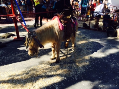 Ponies at the Farmers Market